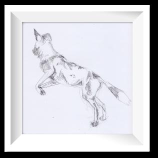 Pencil sketch of a wild dog